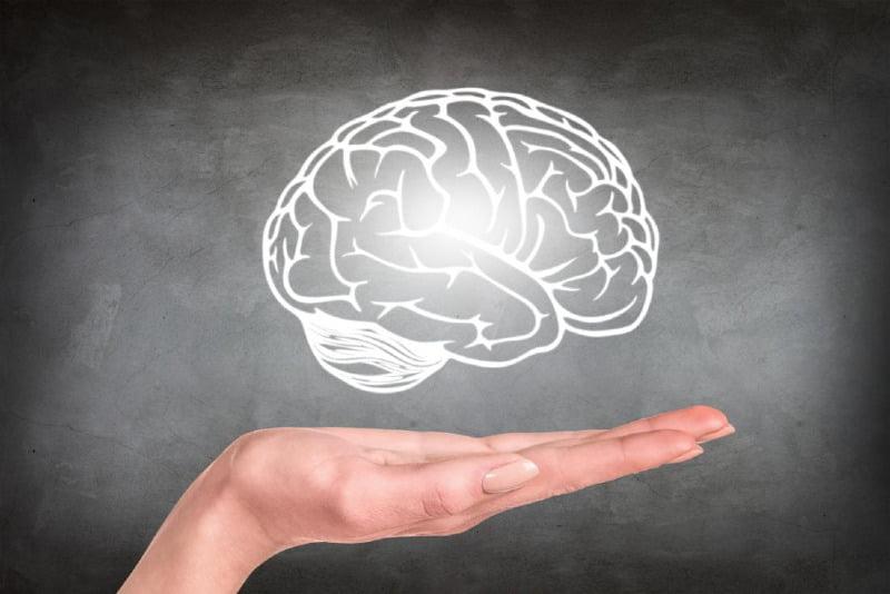 عکس از مغز