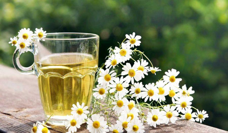 عکس از گل مینا