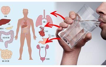 نوشیدن آب گرم